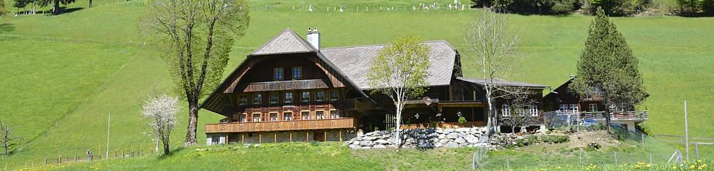 Luzerner Bauernhaus